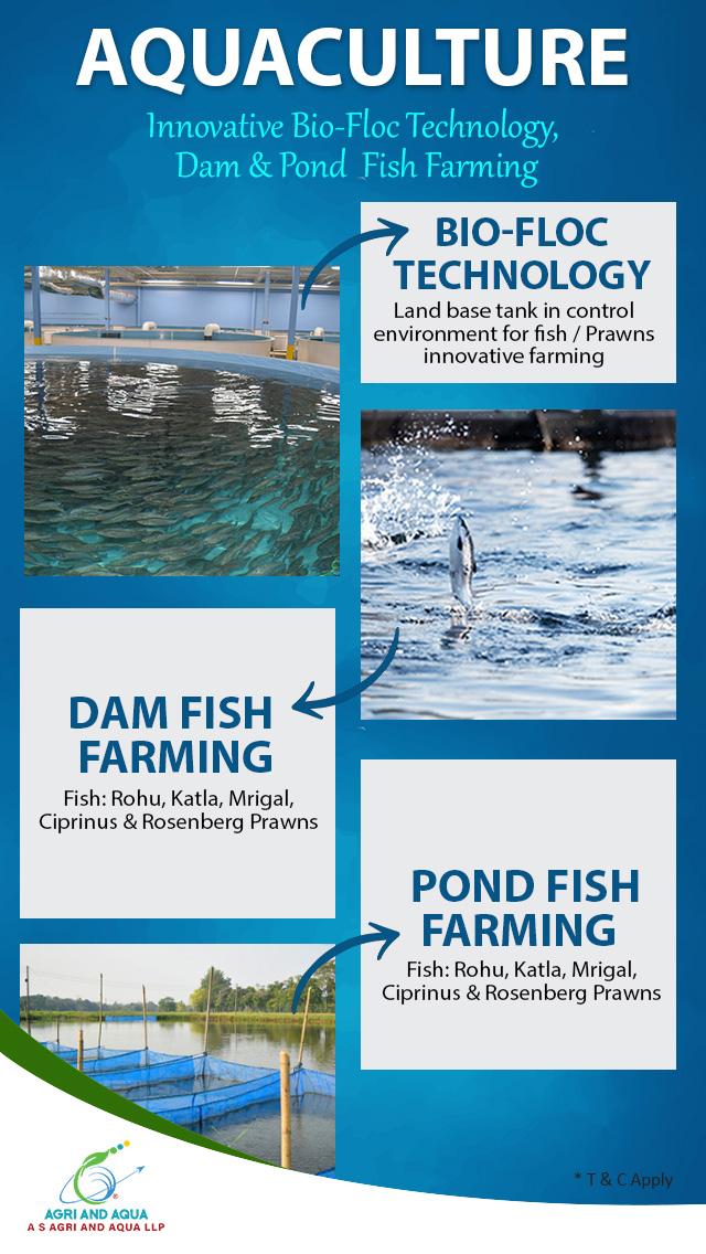 Aquaculture - Pond Fish Farming.